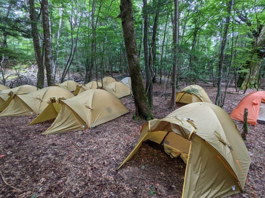 光岳面平キャンプ場